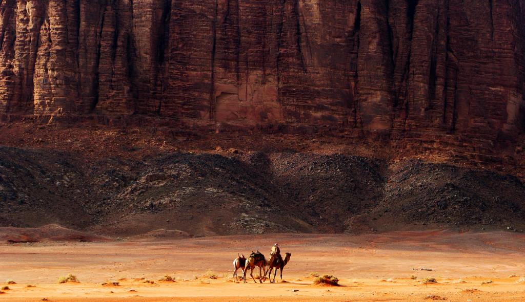 Arabian Desert , Saudi Arabia