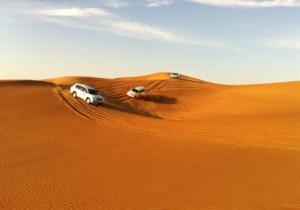 2-sand-safari