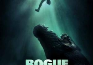 3-Rogue