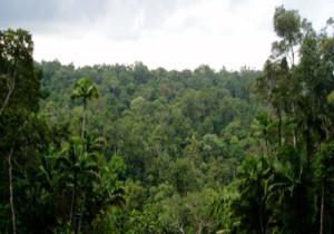 3-Sundaland