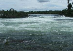 1-Nile