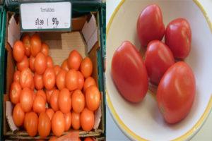 roma-vs-plum-tomatoes